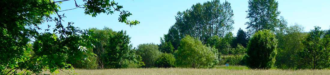 Das Grünland – Kurzversion